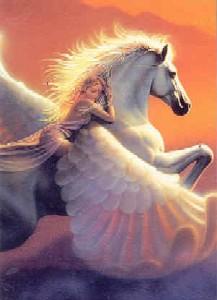 Tuotekuva: Pegasus